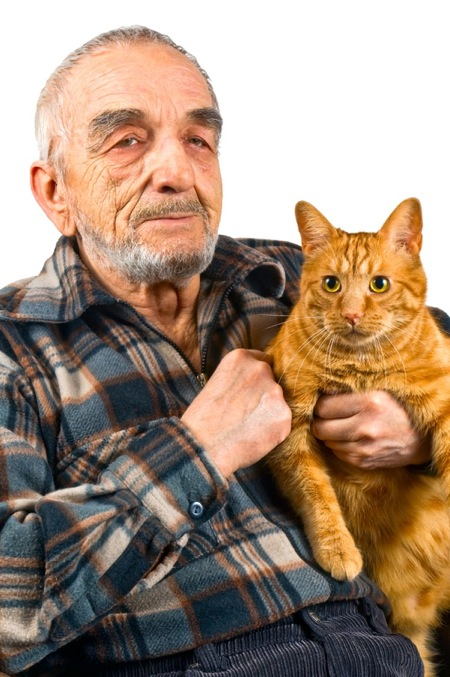 shutterstock elderly man with cat